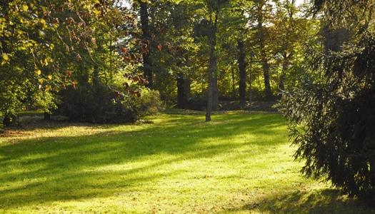 Bestattende Schreiner - Der letzte Ruheplatz - Ort der Erinnerung